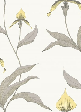 Contemporary Restyled Cole&Son 95/10057